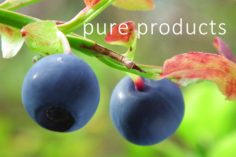 AvivNaturals Pure Product Ingredients Vision Quest Bilberries Eye Health Supplement